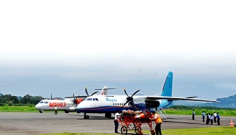 bandara Pinang Sori