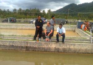 Kolam Balai Benih Ikan Purbatua